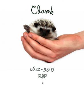 Clark RIP